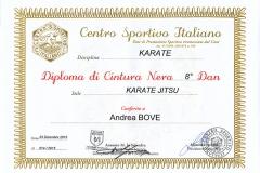 Diploma_CSI_Dan_8_Karate_maestro_Andrea_Bove