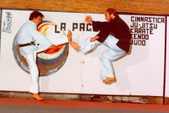 Karate_ITDA_International_Tactical_Defense_Academy_Maestro_Andrea_Bove_41