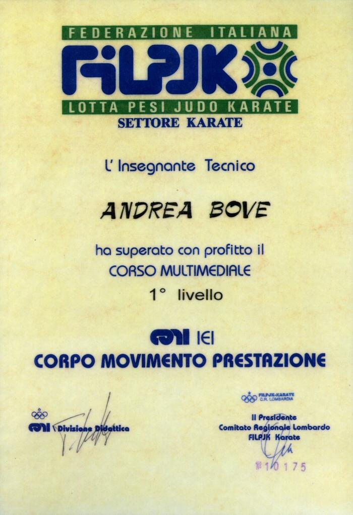 Karate maestro Andrea Bove