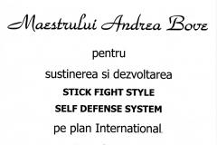 3-self-defence-bove-vasile