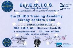Diploma-Eur.E.th.I.C.S.-Andrea-Bove-karate-do