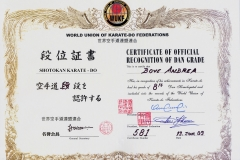 andrea_bove_hanshi_8_dan_wordl_union_karate_federation